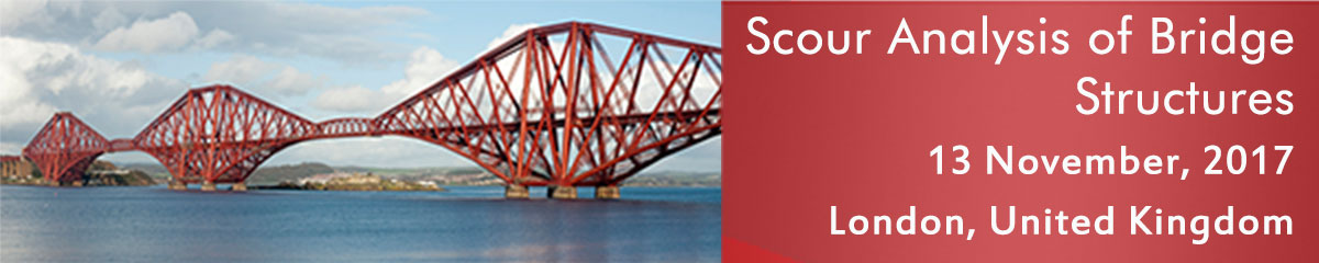 Scour Analysis of Bridge Structures
